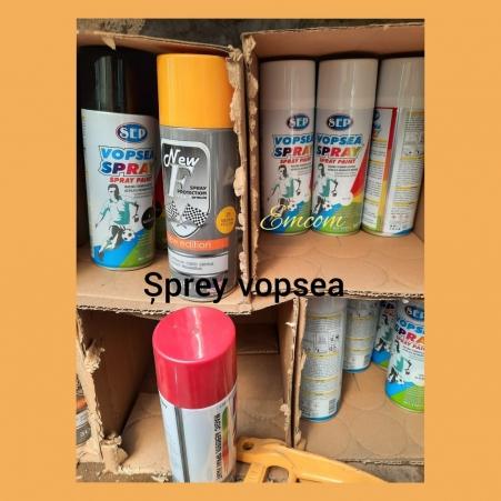 Vopsea spray  diverse culori